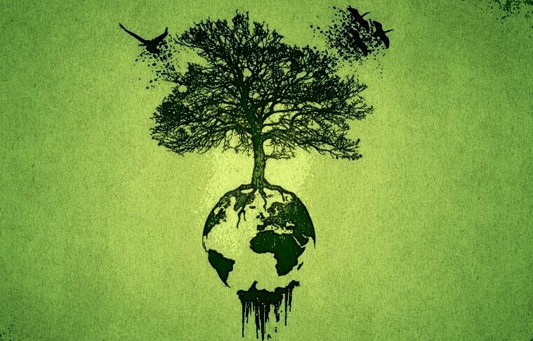 Korupsi Sumber Daya Alam